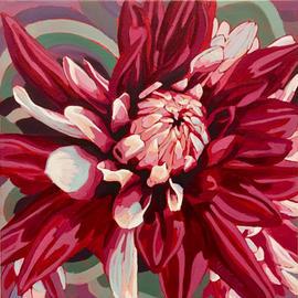 Multicoloured Dahlia Love