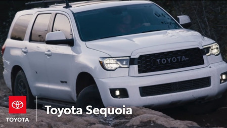 The Sequoia Earns Its TRD Pro Badge on Vancouver Island | Toyota