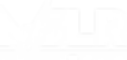 MSLR-Electro-E-Foil(white).png