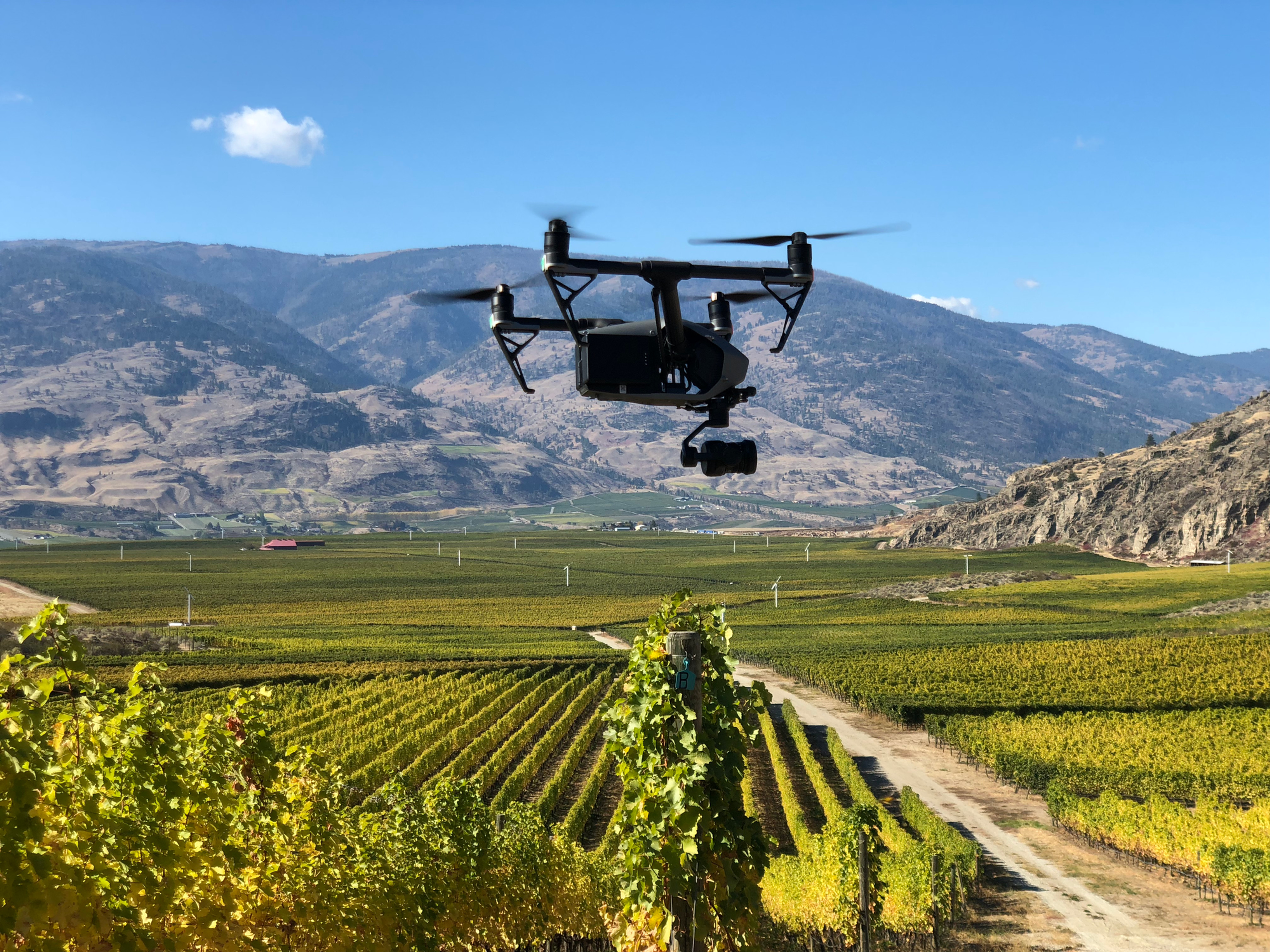 Uav/Drone Services