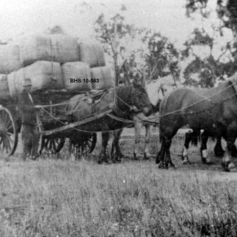 "First wool clip of 17 bales from ""Three Brooks"" to leave Bridgetown c1928"