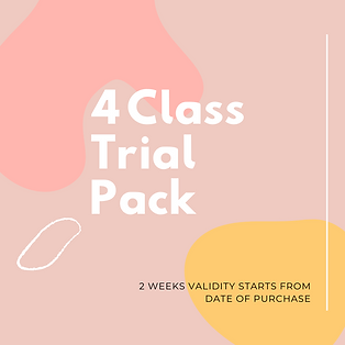 4 Class Trial Pack