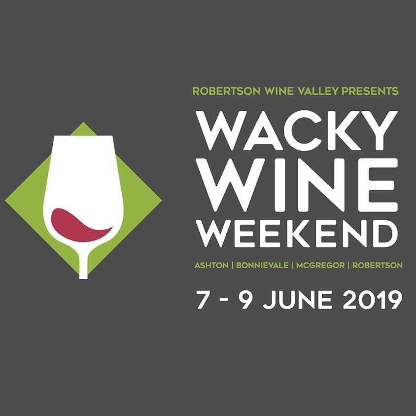 Matt Carstens at Wacky Wine Festival (Robertson)