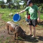Följ Emma och Andreas äventyr i Filippinerna