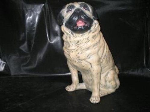 Large Pug