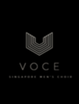 VOCE logo - Copy.png