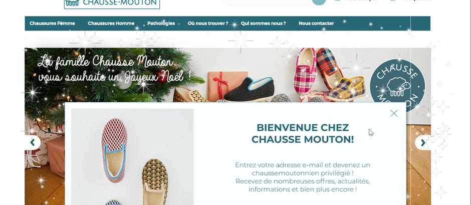 Copie de Maquettes sites web.