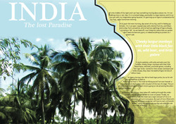 Terra Nova Magazine Article Design