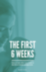 Ebook - the first six weeks.png