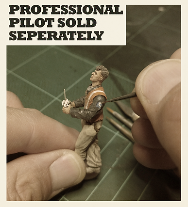 Pilot figure.png