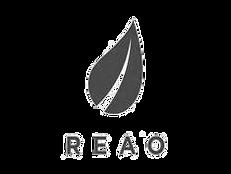 REAO.png