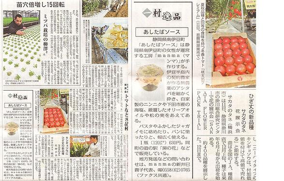 nikkei_2010_Nov.jpg