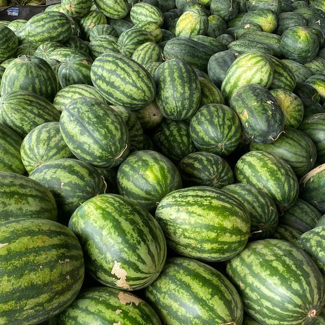 Watermelon for Elephants