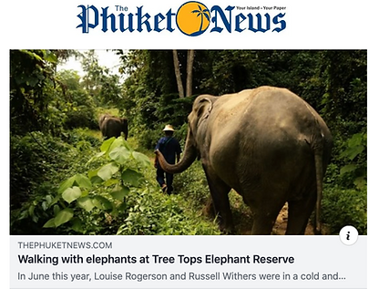 Tree Tops Elephant Reserve, Phuket, Thailand
