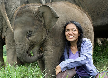 Lek Chailert founder of Elephant Nature Park