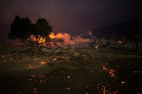 Irvine on Fire