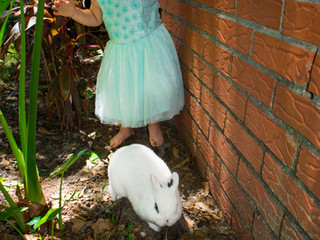 Lena's Easter Mini