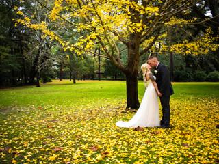 Janshen Wedding 12.8.17