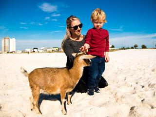 Gavin | Baby Goat Minis