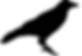 ravenplaceholder.png