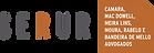 Logo Serur 2020.png