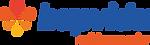 Logo Hapvida.png