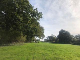 field-Barn-view.jpg