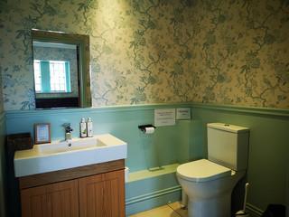 potting shed toilet.jpg