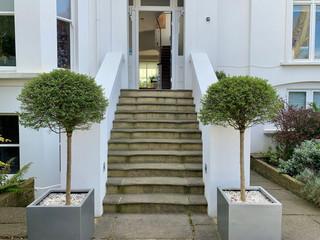 MH-Front-door-stairs-alt.jpg