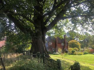 great-oak_house.jpg