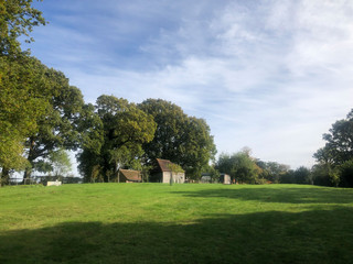 Barn-woodshed-orchard.jpg