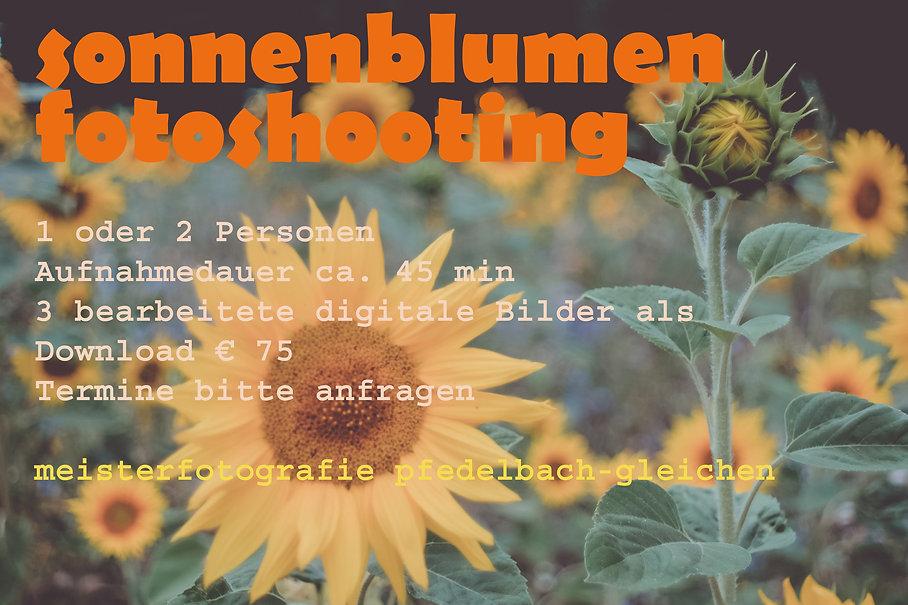 Sonneblumen-Aktion.jpg
