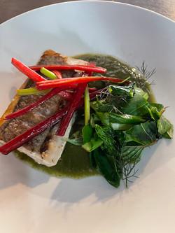 pescado y jugo clorofila