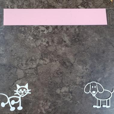Puppies & Kittens - Light Pink Band