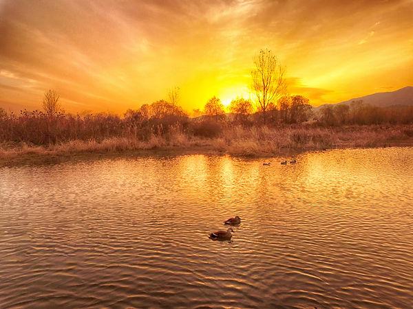 12560916_MotionElements_sunset-of-nakdon