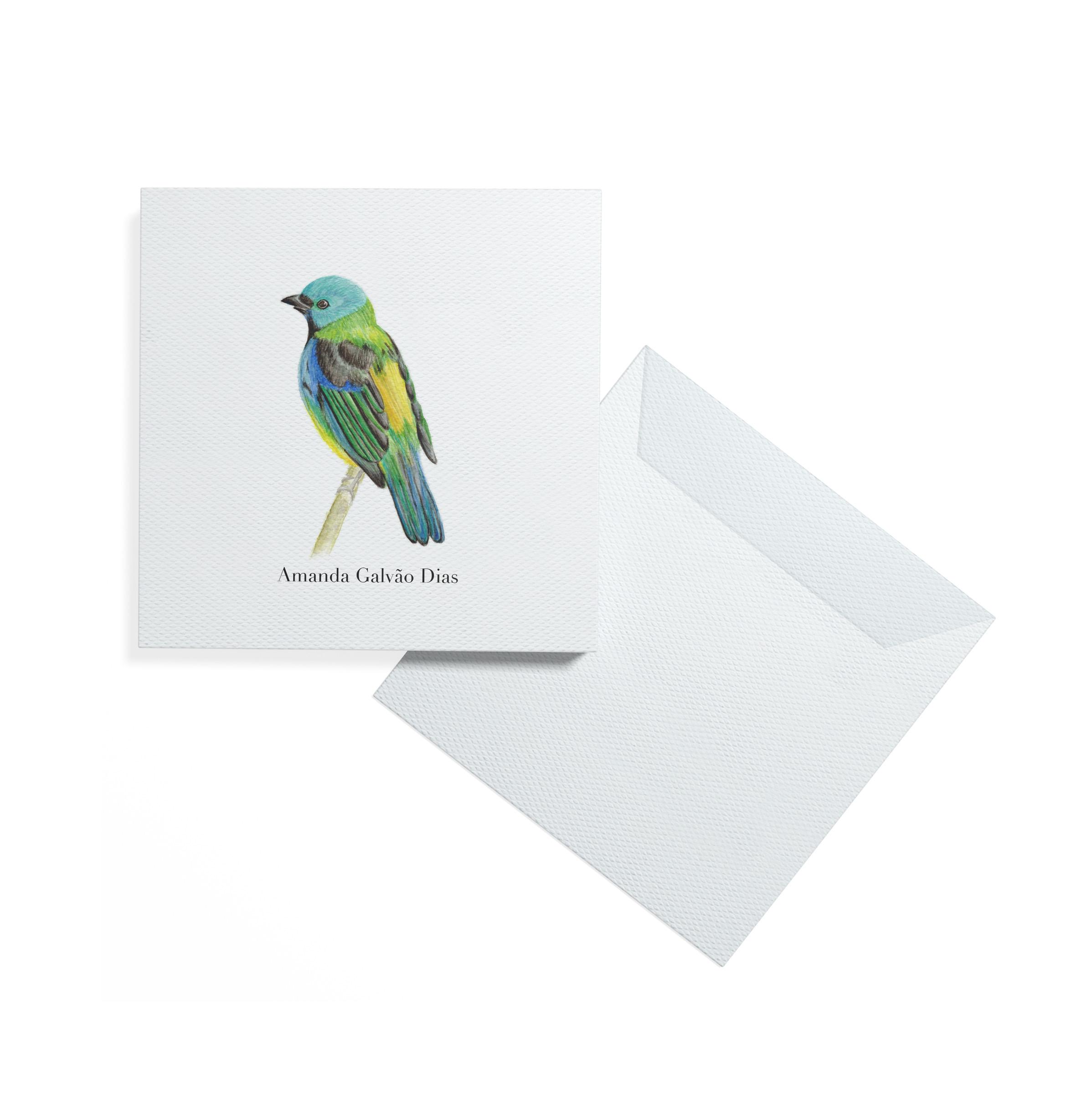 cartão_modelo_fundo_branco_saira