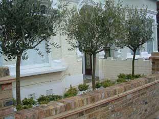 London Garden Design and Build
