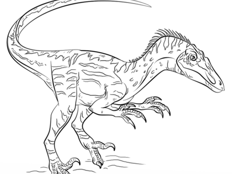 Free dinosaur colouring sheets