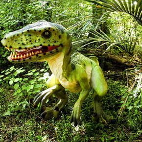 Jurassic Trail & Quiz