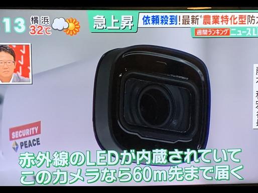 農家に向けた防犯カメラ!!
