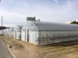農家,農場,防犯カメラ,セキュリティシステム,防犯対策,農業機械