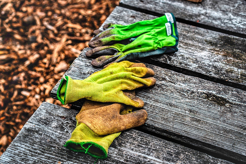 garden gloves 2.jpg