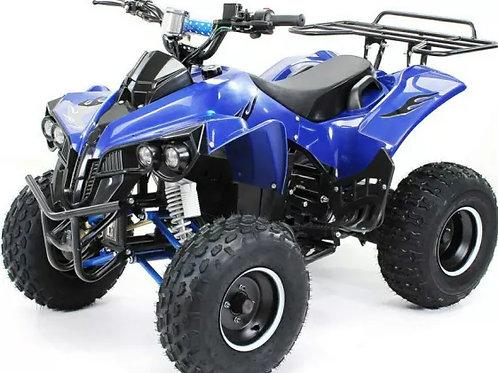 Moto 4 eléctrica ATV