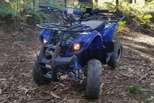 Mini Moto 4 Quad ATV Elétrica
