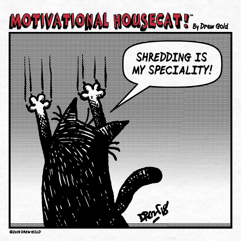 My specialty