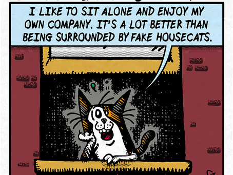 Fake Housecats