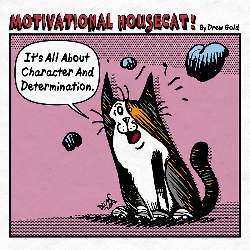 MOTIVATIONAL HOUSECAT 3 REV-05