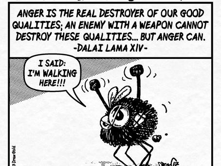 #238: Anger