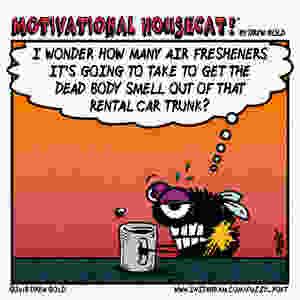Air Fresheners DG