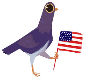 pigeonflag.jpg